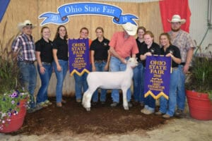 Findlay Southdown Sheep Show Team win Ohio State Fair